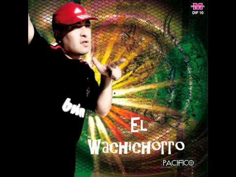 El wachichorro - Soy soltero - El wachi 2011