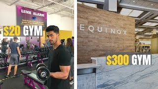 $20 A Month Gym VS $300+ A Month Gym