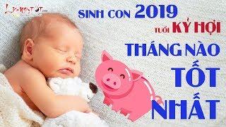 Sinh Con Năm 2019 Tháng Nào Tốt Nhất - Em Bé Sinh Tháng Này Sẽ Được Hưởng Trọn Phúc Khí Đất Trời