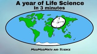 A year of Life Science in 3 minutes-Middle School Science - YouTube