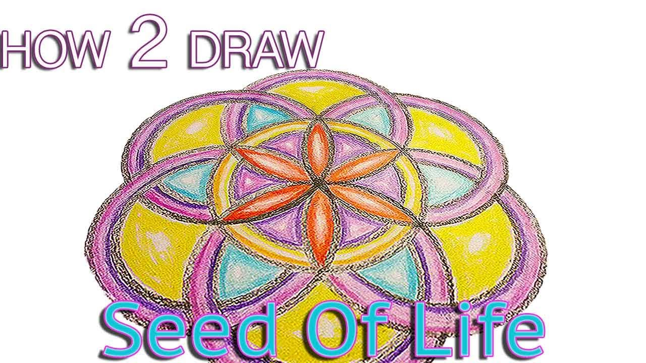How To Draw The Seed Of Life Pattern Tutorial Basic