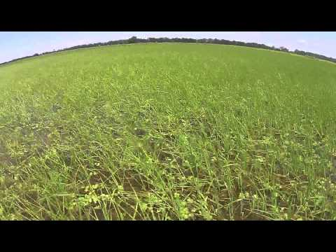 Farm Cam Through Growing Season
