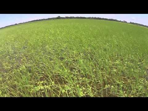 Farm Cam Through Growing Season