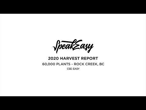 2020 Harvest Report: 60,000 Plants - SpeakEasy Growers