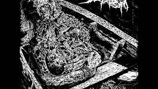 delusional-parasitosis-scaphism-2017-only-delusional-parasitosis-tracks.jpg