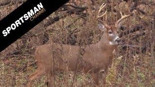 Lucky Shot on a Monster Buck!