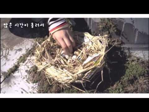 이승환X이규호(KYO) - 꽃(2003.03.12)