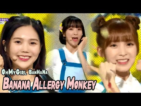 [HOT] OH MY GIRL BANHANA - Banana allergy monkey, 오마이걸 반하나 - 바나나 알러지 원숭이 Show Music core 20180407