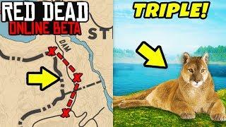 SECRET MONEY METHOD TO GET RICH FAST in Red Dead Online! Triple Cougar Location in RDR2!
