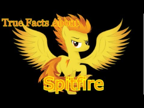 True Facts about Spitfire