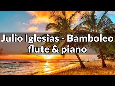 Caballo Viejo / Bamboleo - Instrumental version (Flute&Piano)