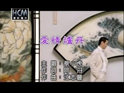 蔡小虎-愛情爐丹(練唱版)