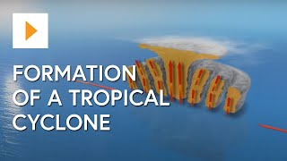 Formation of a Tropical Cyclone