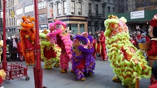 ⁴ᴷ Incredible Lion Dance on Stilts - Chinatown, NYC at Pearl River Mart | WCM Hung Gar Institute