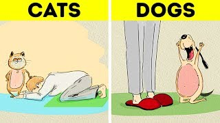 CATS VS DOGS: WHO ARE BETTER?