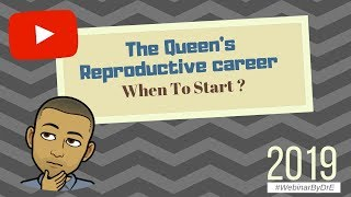 The queen's reproductive career : when to start ? (2019)
