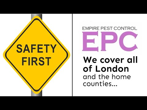 HOW WE ENSURE YOUR HEALTH AND SAFETY | EMPIRE PEST CONTROL LONDON