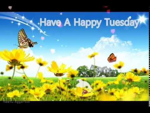 Best Happy Tuesday Video