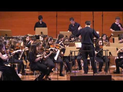 El violinista sobre el tejado L'Intèrpret