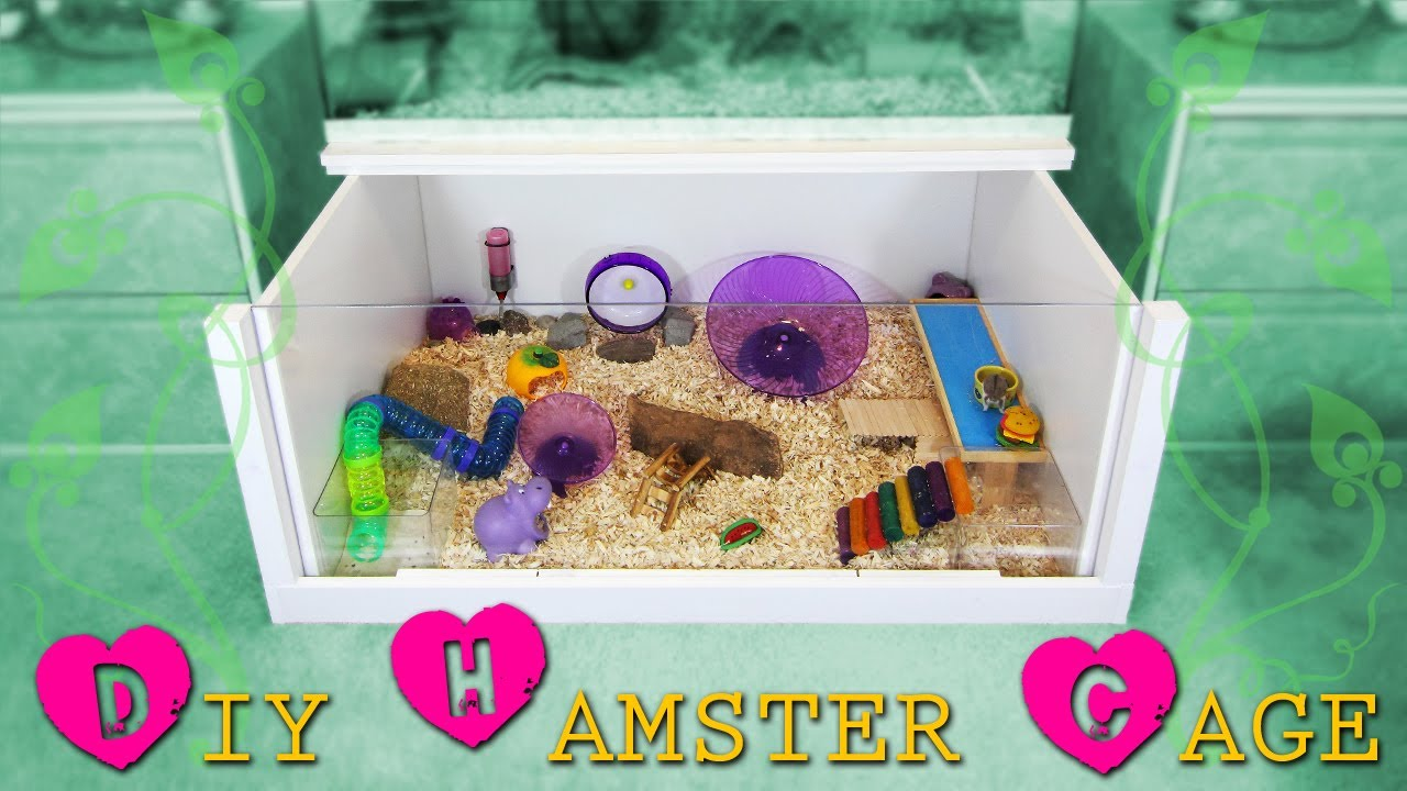 How To Build A Diy Hamster Cage Instructions Youtube