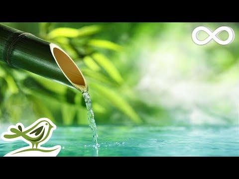 Relaxing Music & Water Sounds: Calm Piano Music, Sleep Music, Peaceful Music ★143