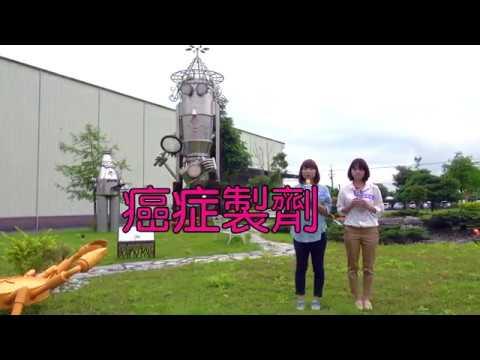 【 杏輝健康園區之藥博士&螃蟹公園 】