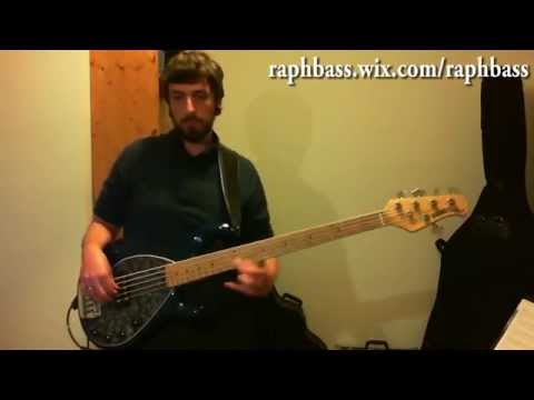 Infectious Grooves - Punk It Up bass cover