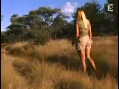 La femme et les guépards sauvages