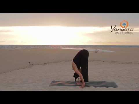 Uttanasana | Standing Forward Bend by Allison Eaton