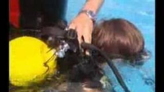 Bautismo de buceo en el oceanografic