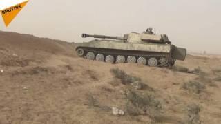 الجيش السوري يلاحق مسلحي quotداعشquot في دير الزور     -