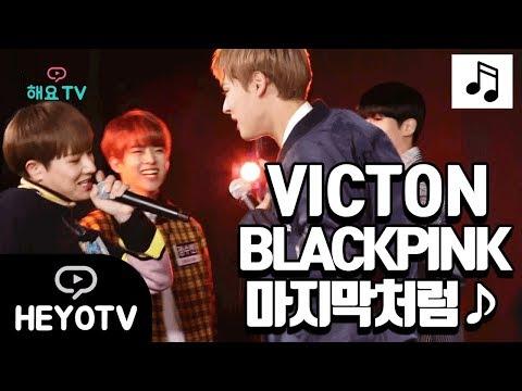 [VICTON] 도부장님의 2차 회식 블랙핑크 - 마지막처럼 (원키!) ♪ @해요TV 빅톤의 사생활