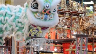 Rooster Year 2017 Pavilion Acrobatic Lion Dance 母獅救小獅子