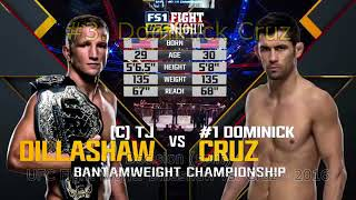 T. J. Dillashaw COMPLETE LOSSES in MMA Fights (UFC)