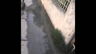 Reclamo añejo: aguas servidas