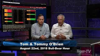 august-22nd-bull-bear-nadex-option-hour-on-tfnn-2018.jpg