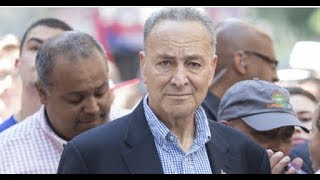 WATCH! MSNBC PANEL HUMILIATES CHUCK SCHUMER ON LIVE TV!