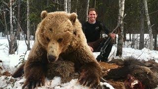 2 Giant interior Alaskan Grizzlies! - Limitless 35