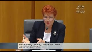 Pauline Hanson asks if pump-jet submarines can only stay underwater for 20mins