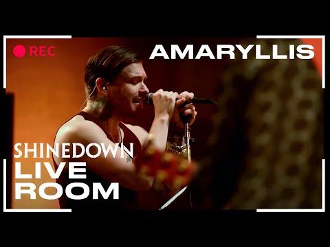 Amaryllis (The Live Room)