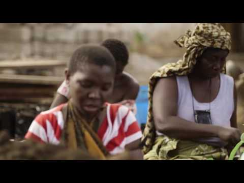 Chapitre 1: Tanzanie (REDD+ et l'avenir des forêts africaines)