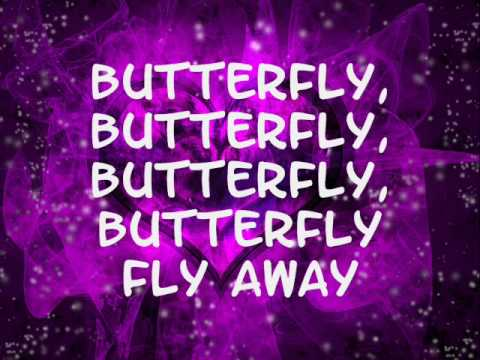 Baixar Miley Cyrus- Butterfly fly away (lyrics)