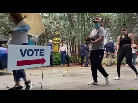 Experts On Protecting Your Vote Before And On Election Day   MSNBC