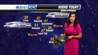 KGMB Hawaii News Now - Kokua Films Hawaii Pic of South Point - APR 28 2013