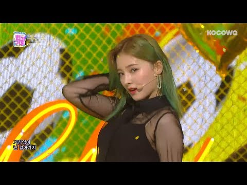 WJSN & Momoland & Pristin - Just Do Itㅣ우모프 - 거침없이 [Inkigayo Ep 962]