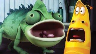 LARVA - FROG | Cartoon Movie | Cartoons For Children | Larva Cartoon | LARVA Official