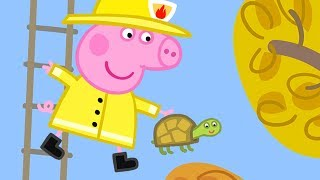 Peppa Pig Full Episodes | LIVE Peppa Pig 2017 #144