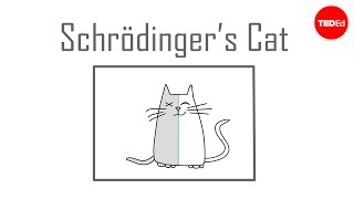 Schrödinger's cat: A thought experiment in quantum mechanics - Chad Orzel