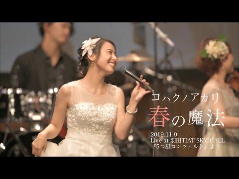 コハクノアカリ/ 春の魔法 (ホールワンマン2019『5つ星コンツェルト』より)