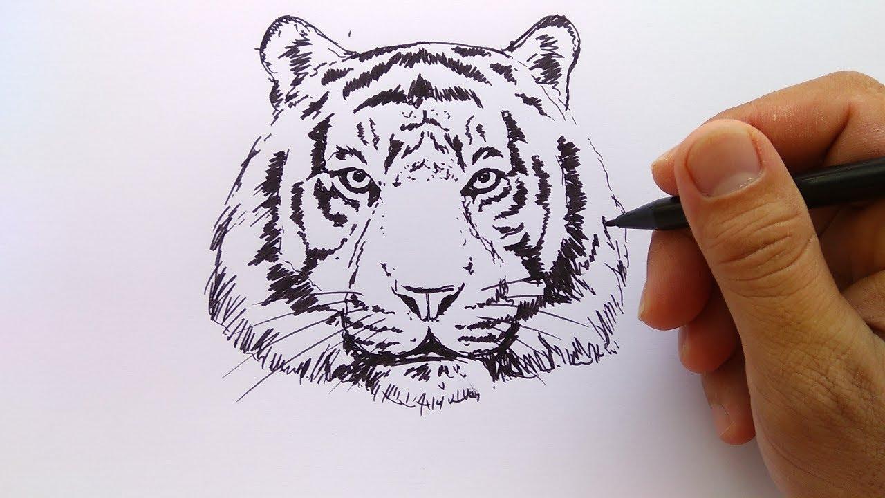 Wallpaper Gambar Harimau Kartun
